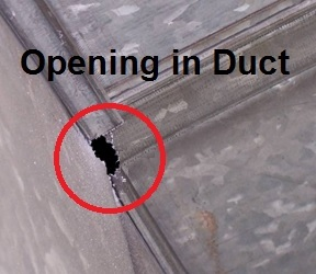 Opening in duct